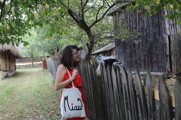 Parcul etnografic Romulus Vuia 2