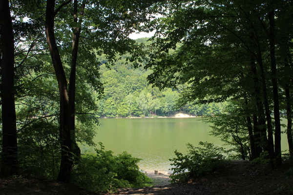 lacul Firiza 1